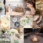 Inspiration Board {1 Theme 3 Ways}: Vintage Safari