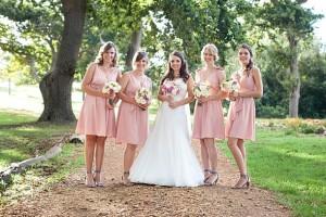 A&D013-southboundbride-wesley-vorster-beloftebos-pink-wedding-bridesmaids