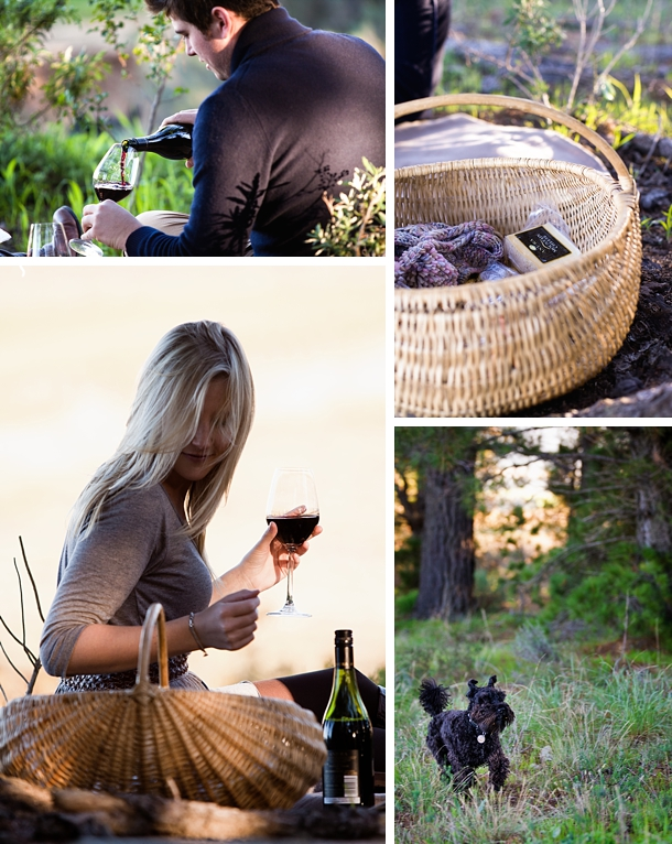 Wine Farm Engagement Shoot | SouthBound Bride