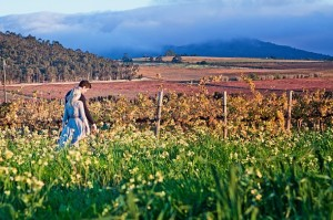 wine-farm-engagement-shoot-anura-008