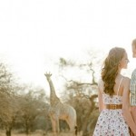Game Farm Engagement