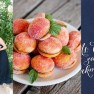 navy peach apricot - F