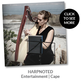 Dir-AdRev-harpNoted