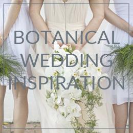 botanical sidebar banner